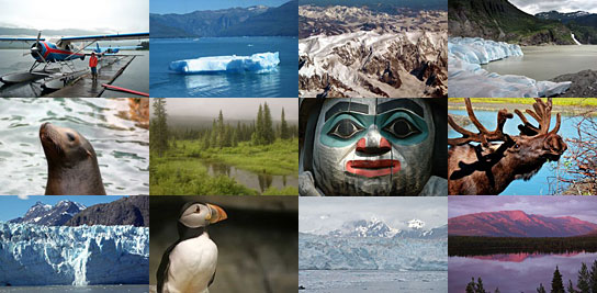 alaska-pics-montage