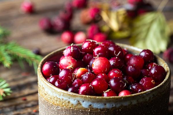 AlaskaWildBerry-Cranberries