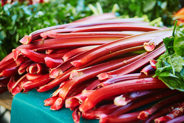 AlaskaWildBerry-Rhubarb